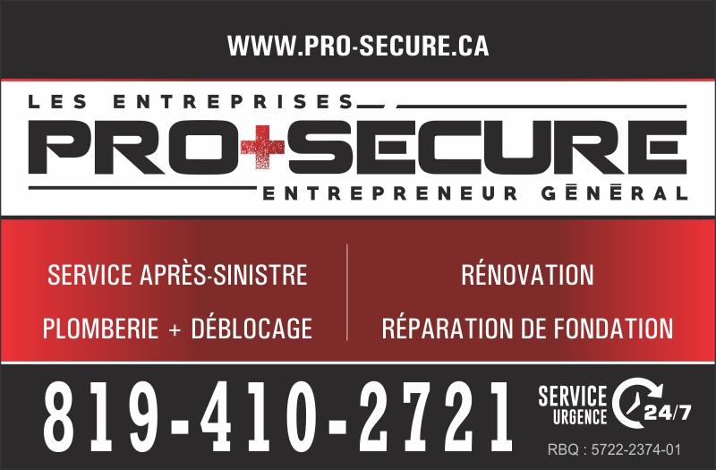 LES ENTREPRISES PRO+SECURE