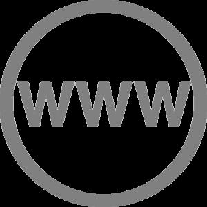 Icône du lien vers site web actif